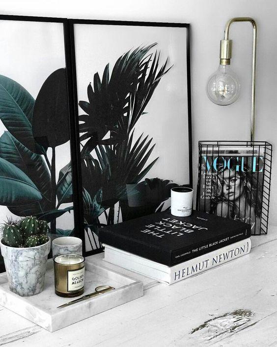 plantas internas para crear espacios únicos en el hogar por Hogara